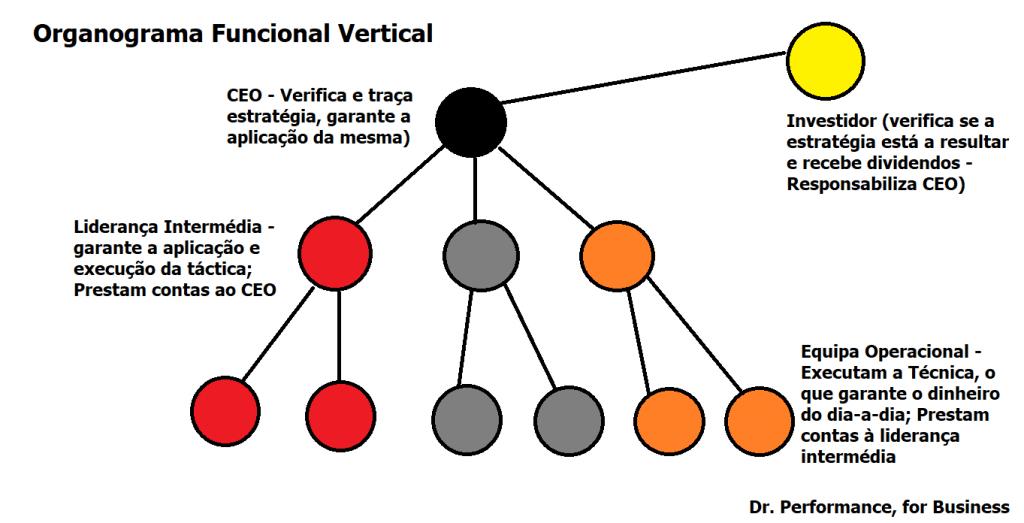 organograma funcional vertical, por Sacha Matias e Dr Performance for Business